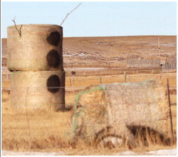 OLAF, the 3-tier hay-bale figure ….